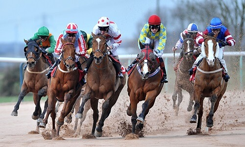 horse racing betting online South Africa