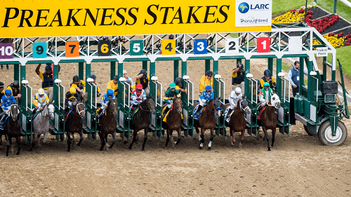 Best Preakness Racing Sites Online