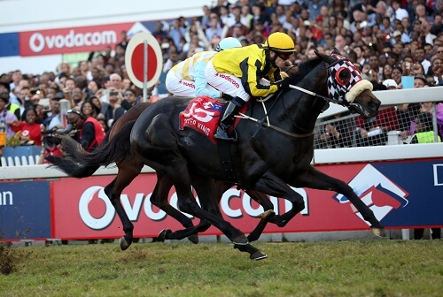 Ante Post Betting for Durban July