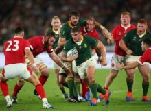 Springboks Face the Red Roses in RWC Final